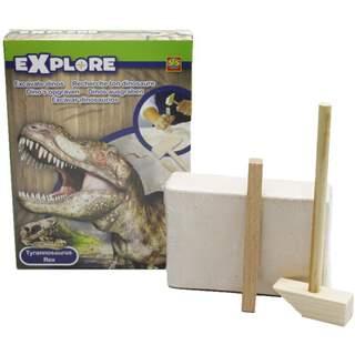 Explore Tyrannosaurus Rex